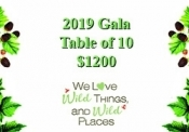 2019 Gala Table of 10