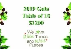 2019 Gala Table of 10