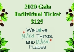 2020 Gala Individual Tickets