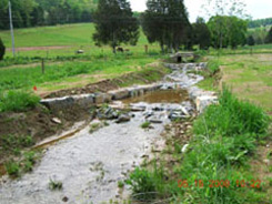After:  Two rock vanes direct the stream flow towards the center of the channel and help to stop erosion of the banks. This helps prevent excess sediment from being deposited. (Looking upstream)