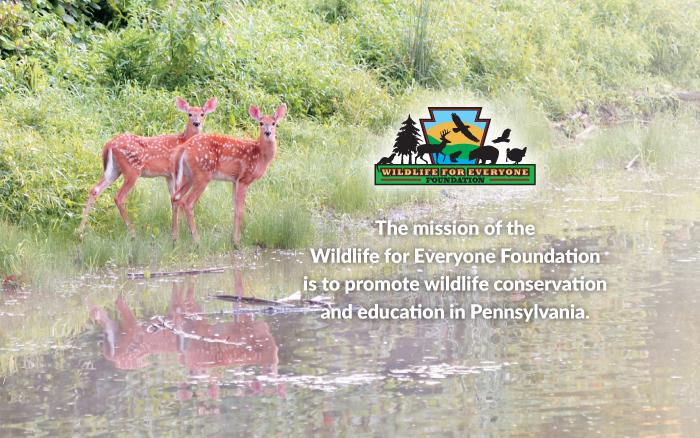 Wildlife For Everyone Endowment Foundation